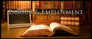 best employment lawyer toronto